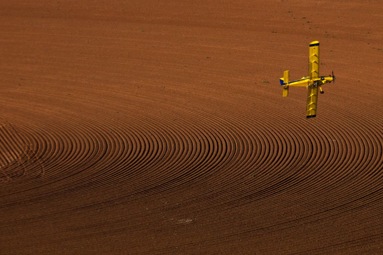 An aerial applicator sprays cotton fields near Lubbock with Monsanto's RoundUp herbicide. RoundUp kills all plants except Monsanto's genetically modified RoundUp Ready Cotton, making it easy for the farmer to reduce time-consuming labor and costs. But the technology is so expensive, that even good years bring a profit of about 10%. Too little for such a risky business like farming.